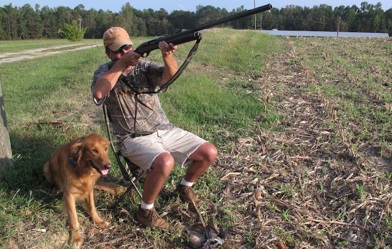 How To Hit More Dove This Fall – A Few Tips