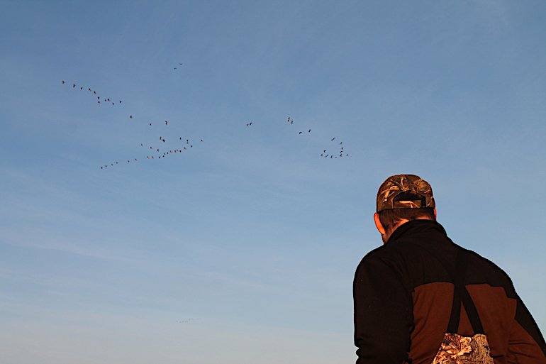 Early Goose Season Tips