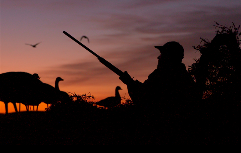 Tips to Make This Your Finest Waterfowl Season Ever