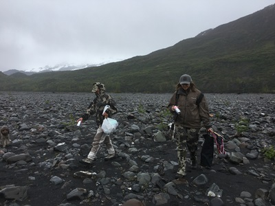 Bear hunting in Alaska